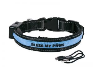 LED DOG COLLAR USB/SOLAR RECHARGEABLE M BLUE