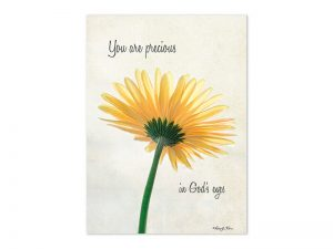 BOXED GREETING CARDS BIRTHDAY DAISY